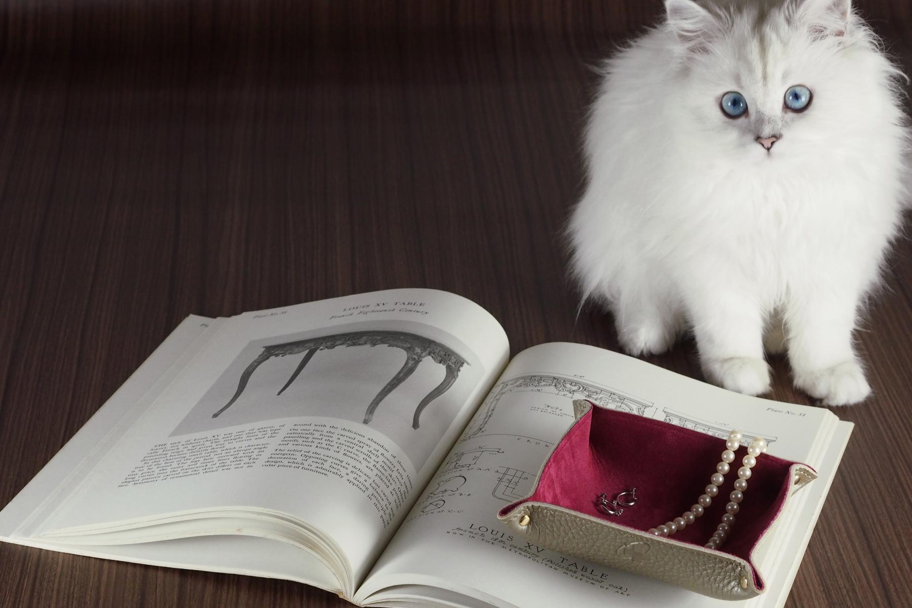 ナチュラル革トレー・オリエンタル仕様とペルシャ猫